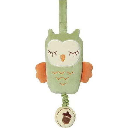 Greenpoint Brands, My Natural, Musical Pull Toy, Green Owl, 1 Toy