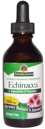 Echinacea, Alcohol-Free, 1000 mg, 2 fl oz (60 ml) by Natures Answer-Kosttillskott, Antibiotika, Echinacea Vätskor