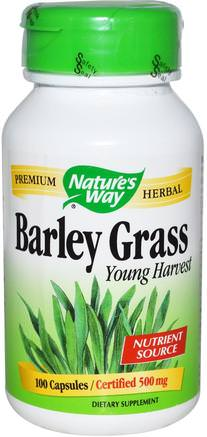 Barley Grass, Young Harvest, 500 mg, 100 Capsules by Natures Way-Kosttillskott, Superfoods, Korngräs