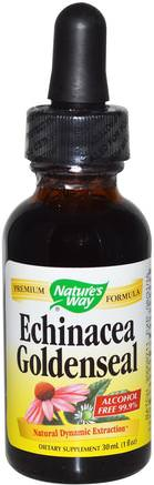 Echinacea Goldenseal, Alcohol Free 99.9%, 1 fl oz (30 ml) by Natures Way-Kosttillskott, Antibiotika